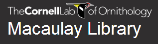 macaulay_lab