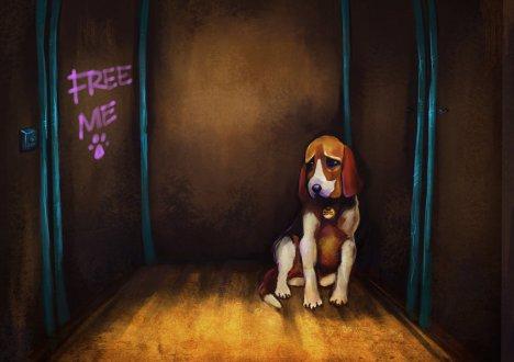 Free_me_Moshydream